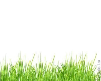 Сонник косить зеленую высокую траву. к чему снится косить зеленую высокую траву видеть во сне - сонник дома солнца