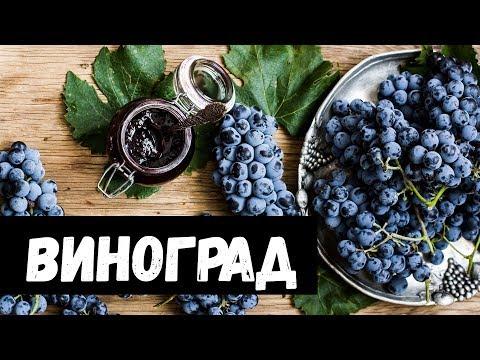 Сонник виноград рассыпался. к чему снится виноград рассыпался видеть во сне - сонник дома солнца