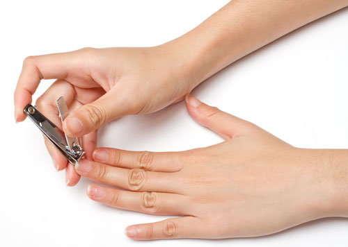 Сонник ногти стричь приснились, к чему снятся ногти стричь во сне видеть?