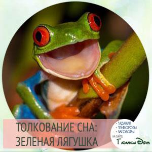 «жаба к чему снится во сне? если видишь во сне жаба, что значит?»