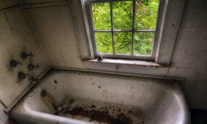 Сонник мыться в грязной ванне. к чему снится мыться в грязной ванне видеть во сне - сонник дома солнца
