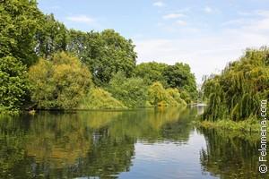 К чему снится чистая вода в реке: значение и толкование сна