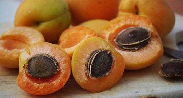 «сонник абрикос приснился, к чему снится во сне абрикос»