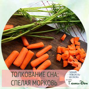 «морковь к чему снится во сне? если видишь во сне морковь, что значит?»