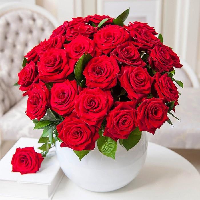 Кусты красных роз