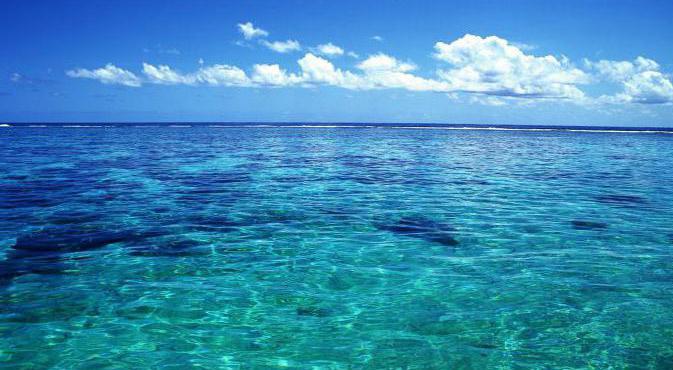 Сонник океан  приснился, к чему снится океан во сне видеть?