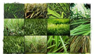 Серпом косить траву