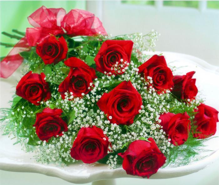 Цветущий куст розы