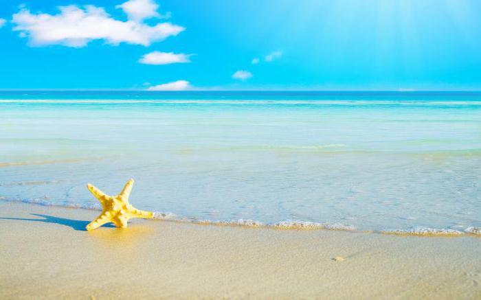 К чему снится океан - сонник, толкование сна про бушующий океан, плавать в голубых водах океана во сне