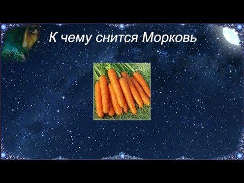 К чему снится морковь: свежая, большая, морковь на грядке во сне.