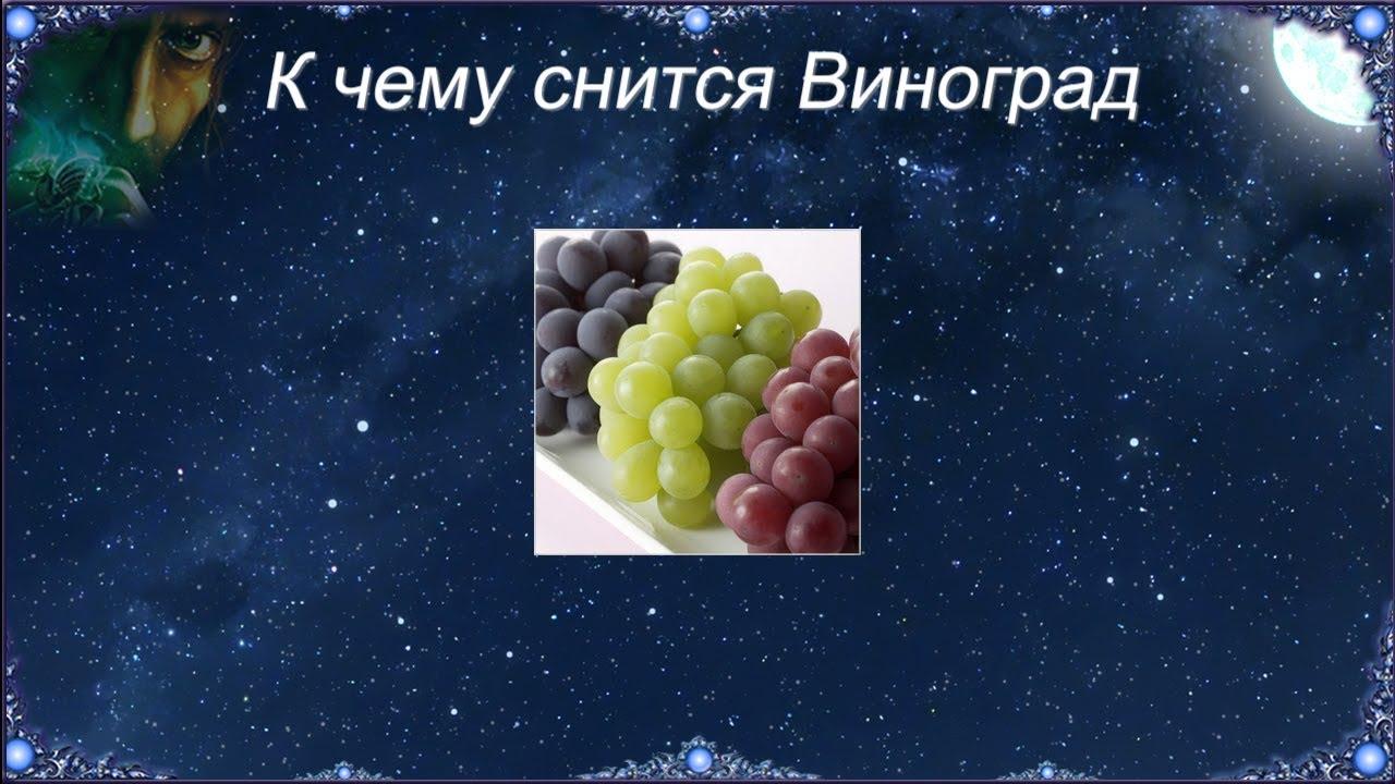 Сонник виноград получить. к чему снится виноград получить видеть во сне - сонник дома солнца