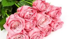 К чему снится роза во сне — по 90 сонникам! если видишь во сне роза что значит?