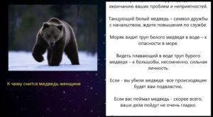 К чему снится белый медведь: что говорят сонники миллера, ванги, нострадамуса и фрейда и другие. толкование снов о белом медведе