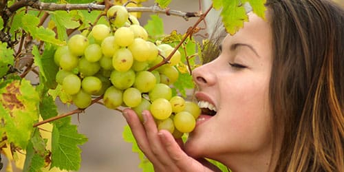 Торговать виноградом