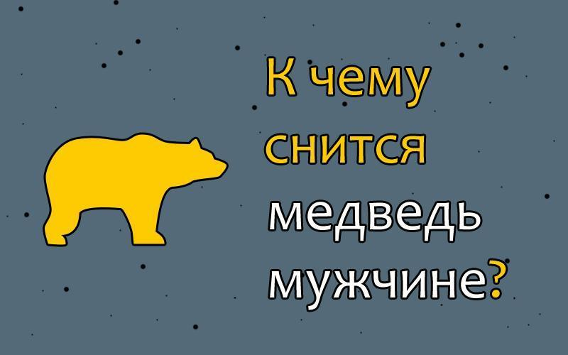 К чему снится медведь?