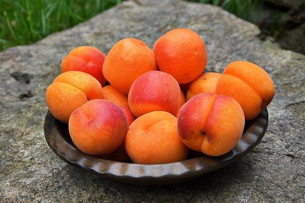 К чему снится абрикос по соннику