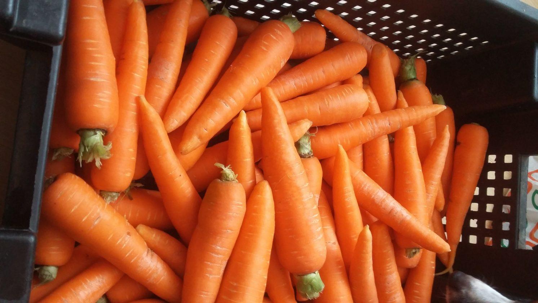 К чему снится морковь во сне — по 90 сонникам! если видишь во сне морковь что значит?