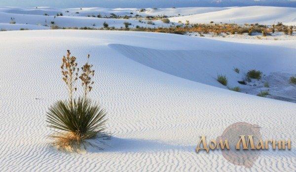 К чему снится песок — значение сна песок по соннику