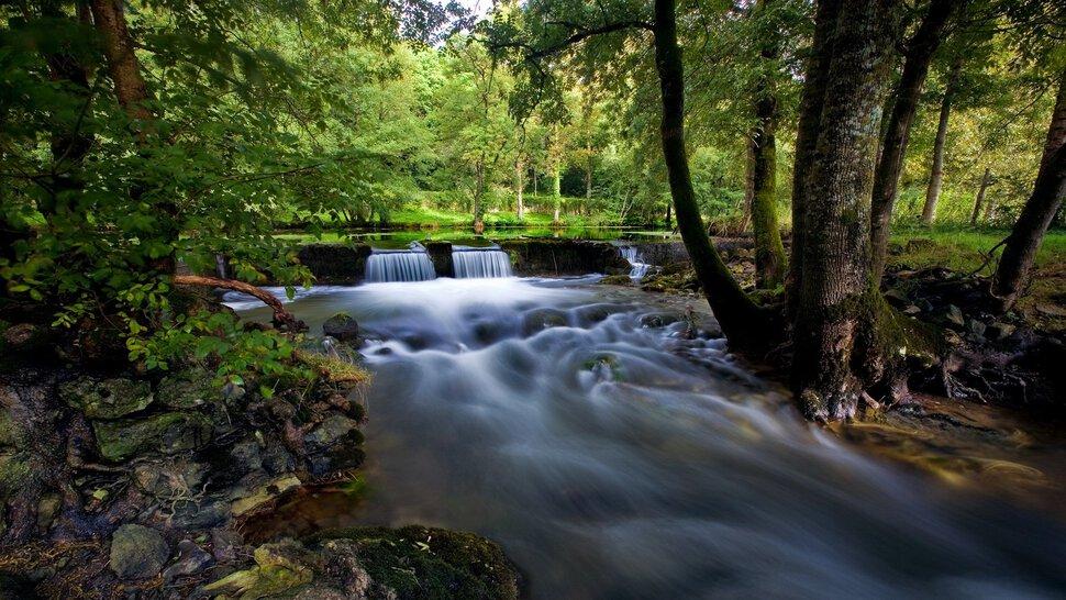Река фекалии