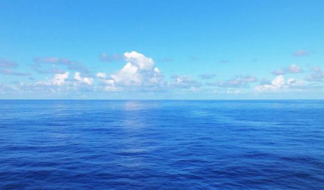 Сонник океан: к чему снится океан во сне - толкование снов