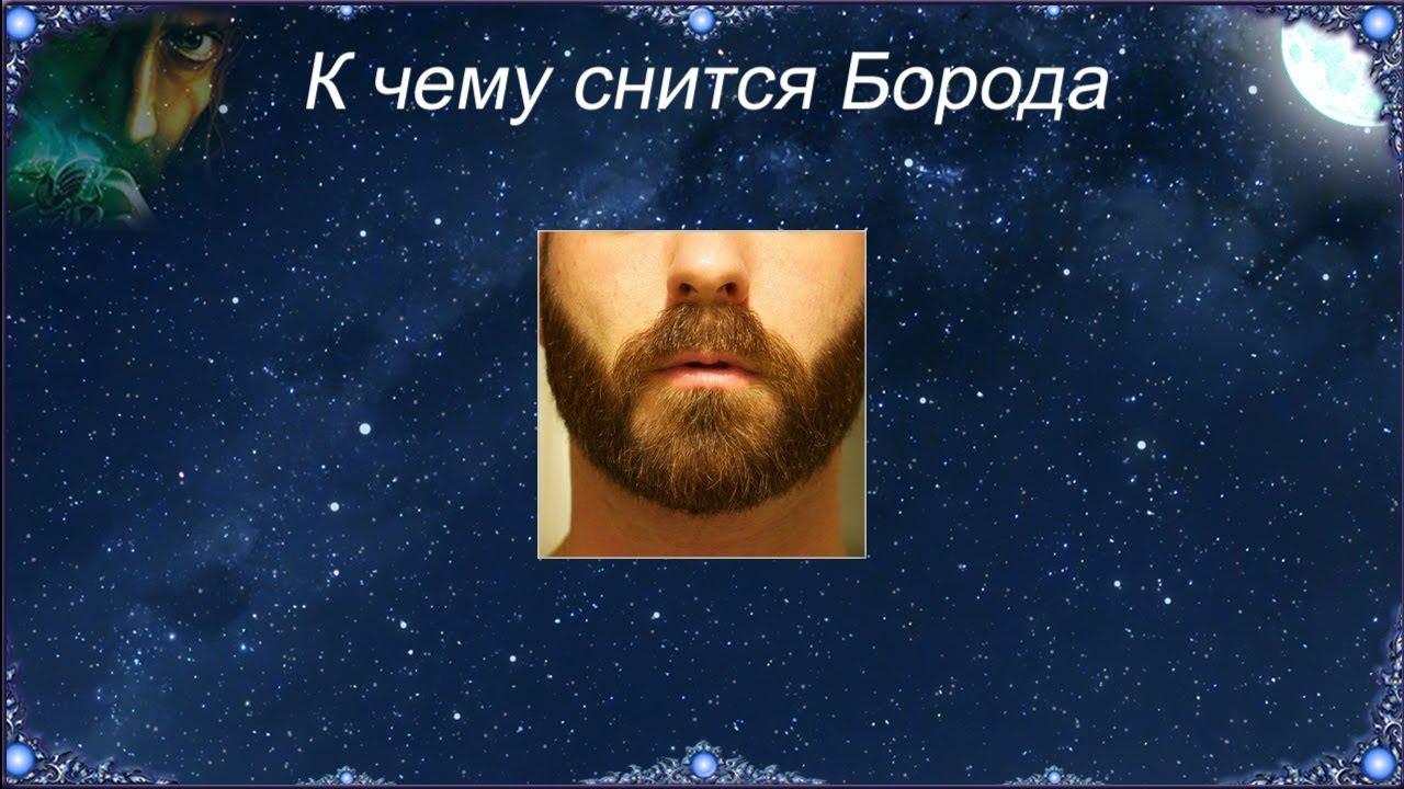 Брови борода