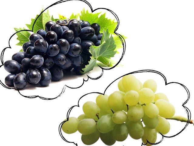 Сонник хотеть купить виноград. к чему снится хотеть купить виноград видеть во сне - сонник дома солнца