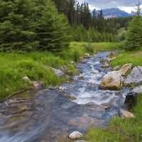 Приснилась река — значение сна